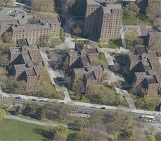 Fort_greene_whitman_ingersoll_nycha