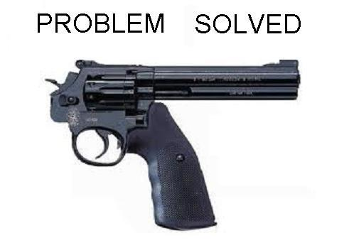 brooklyn ron demand that all guns be like this one and the